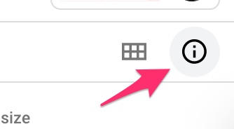 Highlighting the icon that opens the Details pane